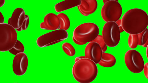 Red blood cells in an artery CG動画
