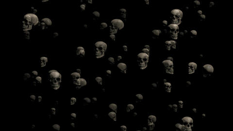 Skull CG animation Animation
