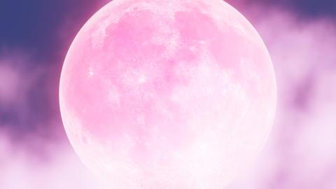 Moon in the Sky F 애니메이션