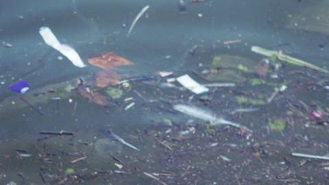 Garbage plastics floating in the sea Footage