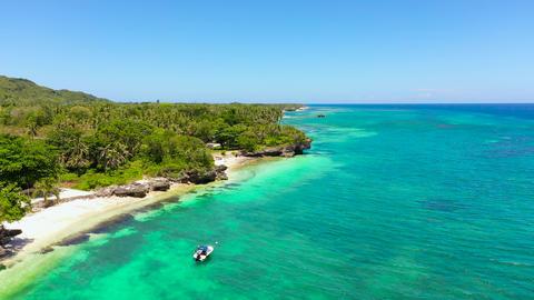 Coast with a beach and blue sea. Anda Bohol, Philippines ライブ動画