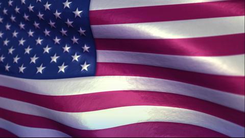 United States of America Animation
