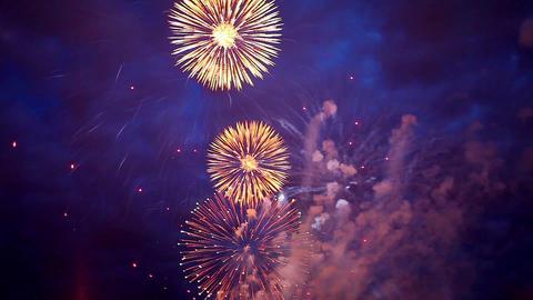 fireworks chrysanthemum Footage
