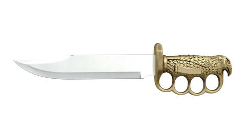 Knife dagger with decorative golden handle Animation