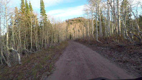 Forest on top of mountain recreation ride POV HD 944 Footage