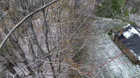 Aerial Drone - Fly Over Bare Trees in Snow Until Drone Crashes Into Trees 4K Live Action