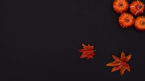 Autumnal decoration on black theme. Stop motion Animation