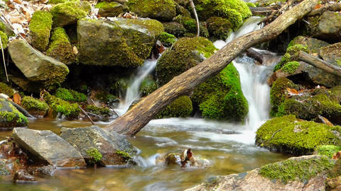 Small creek in forest in slow motion blur Footage