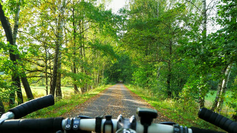 Pov view. Ride bike road in autumn park during early autumn day. Riding mtb cycle in forest Live Action