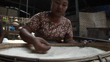 A Woman Sorts Through A Pile Of Rice Grains Near Buddhist Temples In Pagan Of Burma, Myanmar stock footage