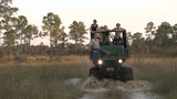 Tourists Take A Safari Through The Florida Everglades stock footage