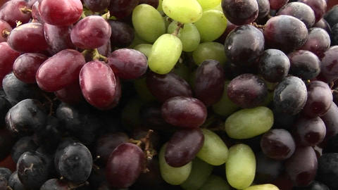 Bunches of grapes are ripe Footage