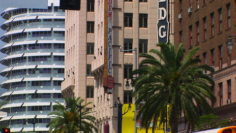 Wind blows palm trees in Hollywood Stock Video Footage