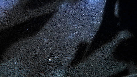 The shadows of pedestrians walking along a city street Stock Video Footage