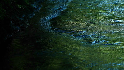 River water reflects green and blue colors Stock Video Footage