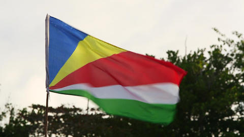 National flag of Seychelles Live Action