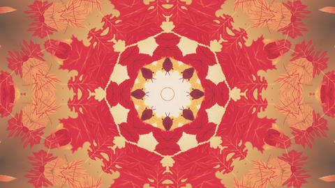Autumn Leaves Kaleidoscopic Background 動畫