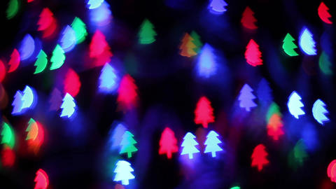 Color pine bokeh 影片素材
