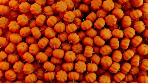 3D animation of orange seasonal fall autumn pumpkins falling down. Falling Animation