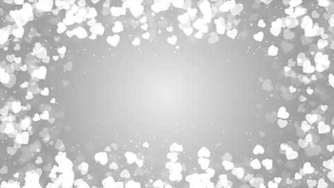 Abstract Bright White background with sparkling Live Action