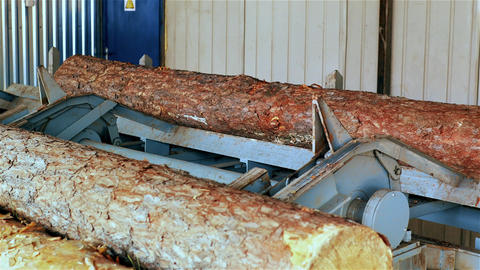 Lumber are moving on the conveyor GIF