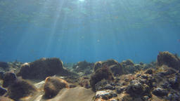 Rocky ground at the bottom of the sea with sunrays Footage