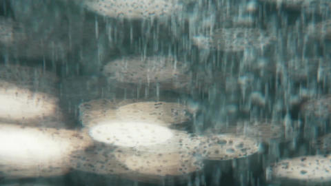 Water Bubbles Rising Up and Exploding Footage
