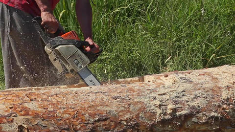 Caucasian Man Sawing Wood With Chainsaw on Green Grass Footage
