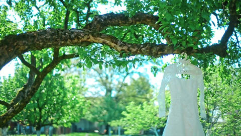 The Wedding White Dress Hangs on Tree Footage