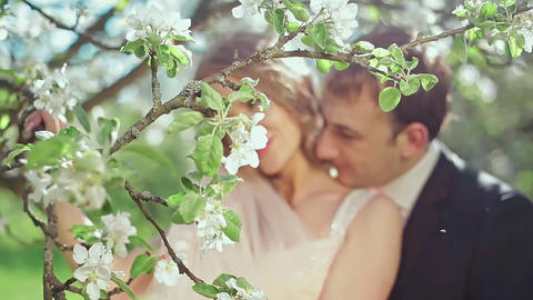 Bride and Groom in a Blooming Apple Garden Footage
