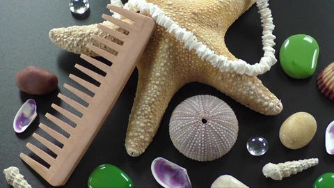 Background with different shells and sea five-pointed stars Footage