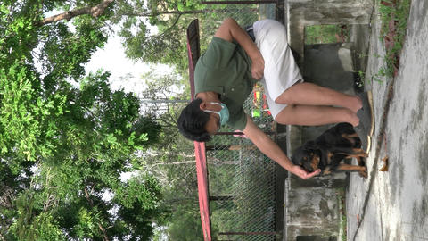Vertical video of Rottweiler puppy dog biting a coconut husk . Dog teething concept Live Action