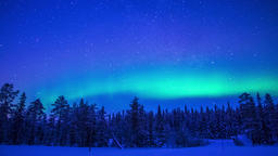 Northern Lights over the Winter Forest. Time Lapse Footage