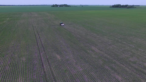 Aerial drone travelling high above farm field as a sprayer travels down the rows Live Action