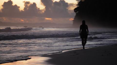 Sunset in Havelock island. Andaman islands, India Footage