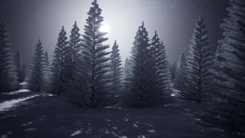 3D Into A White Snowy Forest Landscape Loop Motion Background 動畫