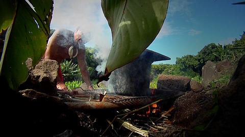 A Hawaiian native prepares tarot root Stock Video Footage