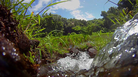 Pure fresh clean water pours from a waterfall Footage