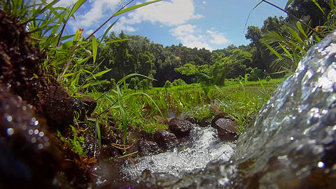 Pure fresh clean water pours from a waterfall Stock Video Footage