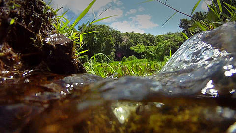 Pure fresh clean water pours down a stream Stock Video Footage