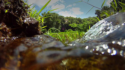 Pure fresh clean water pours down a stream Footage