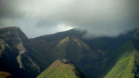 Clouds move over rainforest in Hawaii Stock Video Footage