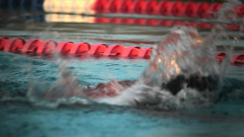 Side view of a swimmer in lanes in a pool Stock Video Footage