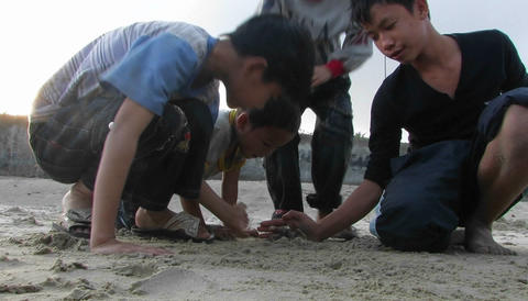 Four kids play with crab Stock Video Footage