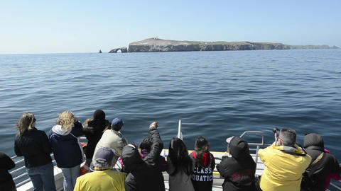 Sightseers on the bow of a boat approaching Anacap Footage