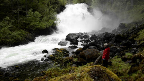 Panning shot of tourist hiking through the rainfor Stock Video Footage