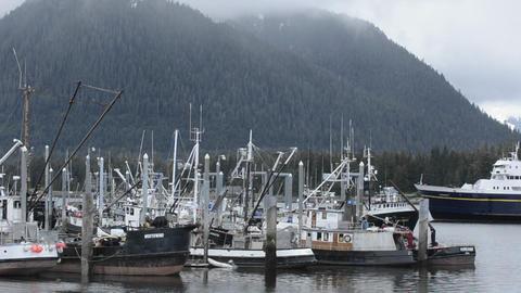 Alaska Marine Highway Ferry entering Wrangell Narr Stock Video Footage