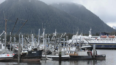 Alaska Marine Highway Ferry entering Wrangell Narr Stock Video Footage