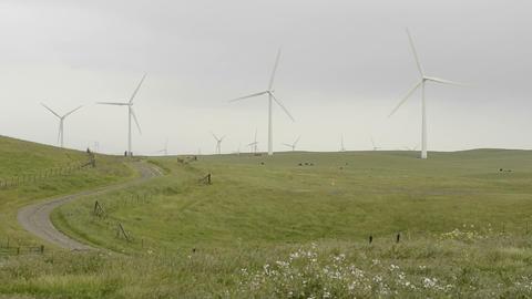 Road leading into a farm of wind turbines generati Stock Video Footage