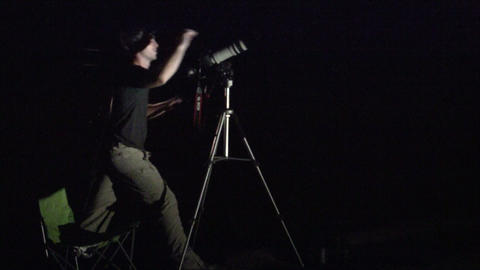 A man photographs wildlife at night Stock Video Footage